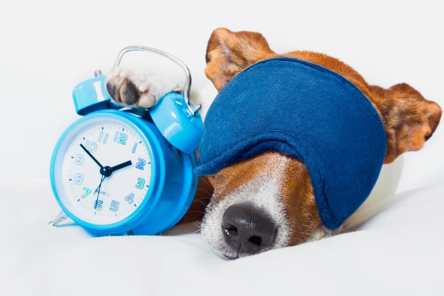 Биохакинг в деле: 10 способов высыпаться и вставать бодрым