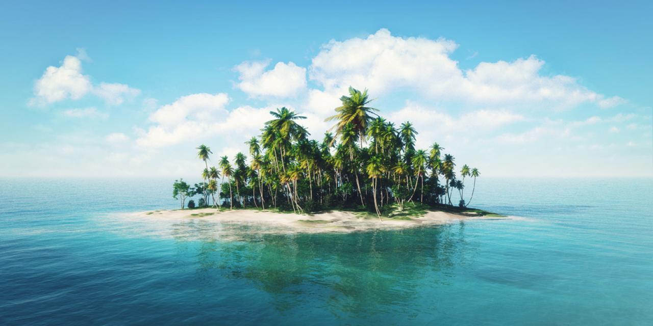 Пользователи интернета хотят купить остров и сделать президентом Илона Маска